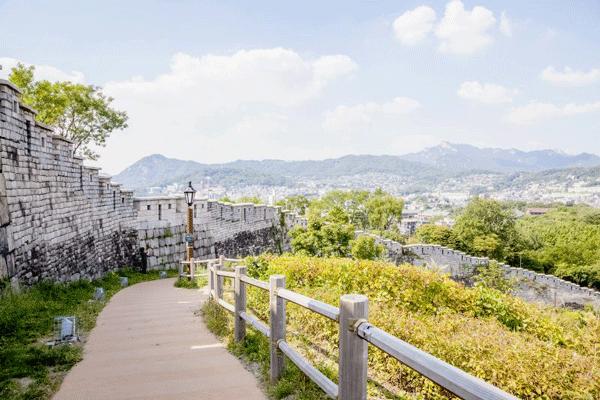 taman-di-korea