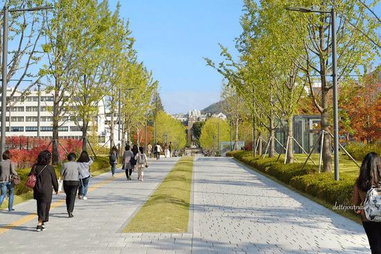 fakta-universitas-yonsei